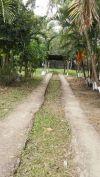Venta de Terrenos en FRANCISCO MORAZÁN, GUAIMACA